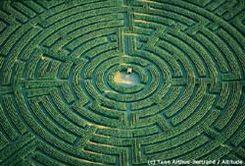 Labyrinthe des maïs